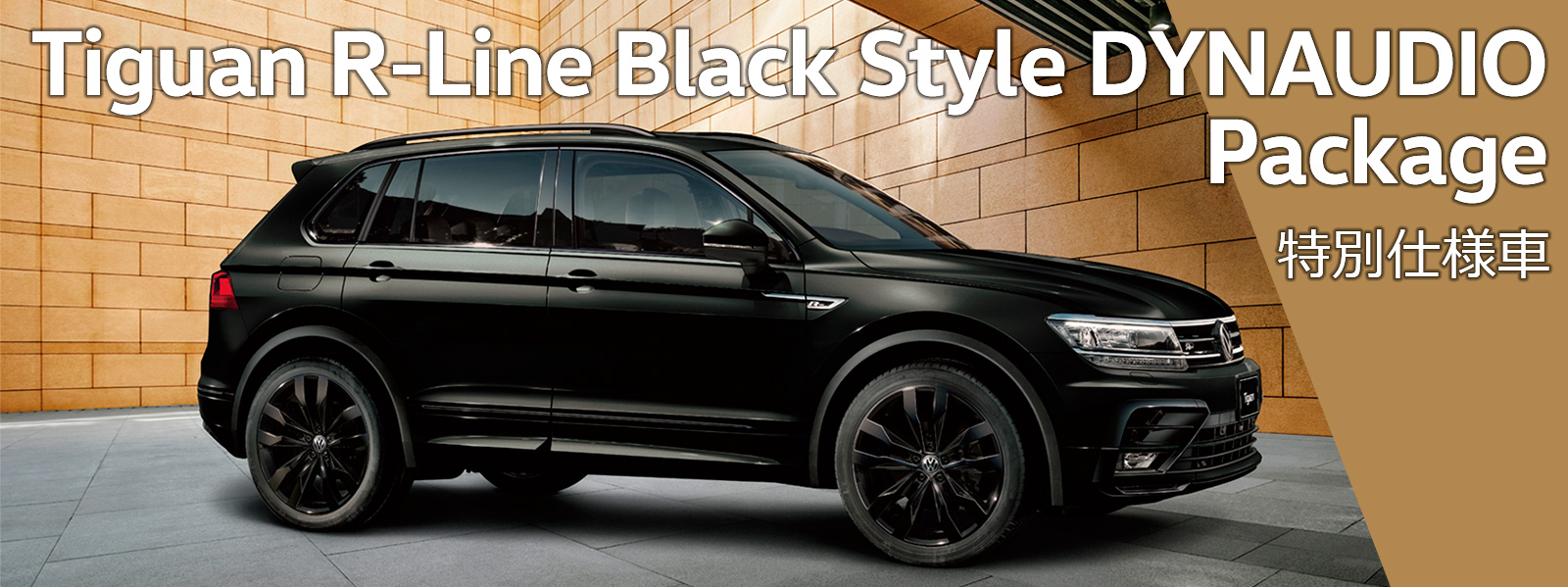 Tiguan R-Line Black Style DYNAUDIO Package